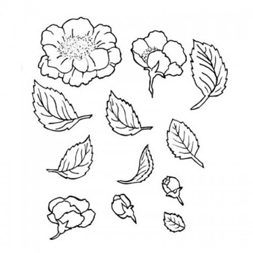 Vykrajovátka patchwork - planá růže - 12ks